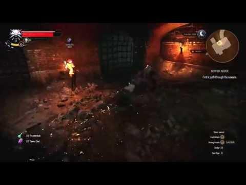 Witcher 3 - Katakan Fight