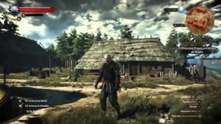 Mods die das Spiel einfach besser machen | The Witcher 3 | Ger/HD+/60 FPS