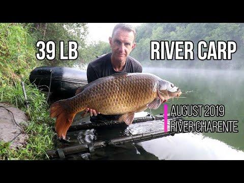 Carp Fishing France: River Charente August 2019