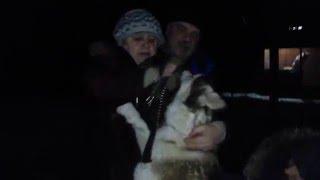Радость потерянной собаки от встречи со своими хозяевами