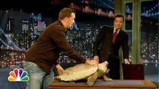 Jeff Musial: Green Iguana, Fennec Fox (Late Night with Jimmy Fallon)