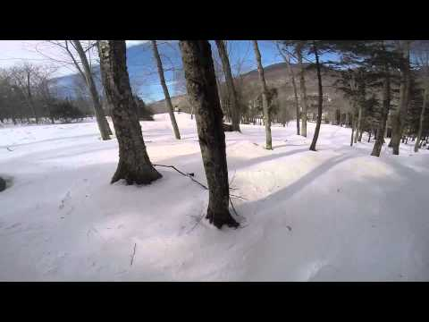 Loon Mountain Glades & Scaler