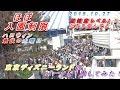 [ほぼ入園制限] ハロウィン最後の土曜日の東京ディズニーランドのパークを1周して…