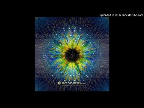 Braincell - Modular Multiverses