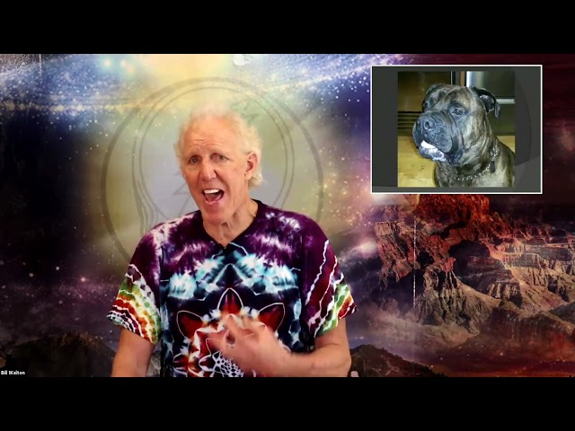 BILL WALTON: Committing to Excellence