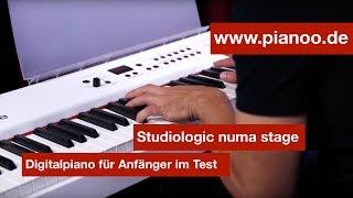 Digitalpiano für Anfänger - Test: Studiologic Numa Stage
