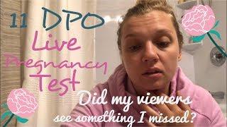 11 dpo live pregnancy test ttc after femara