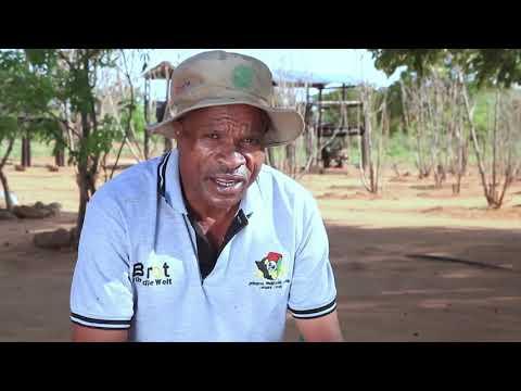 The Agroecological Farming Practices of the Shashe Community of Zimbabwe
