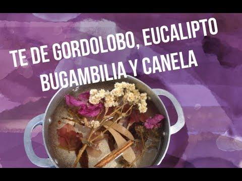 Té De Gordolobo Bugambilia Eucalipto Y Canela Youtube