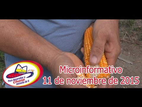 Microinformativo 11 noviembre 2015
