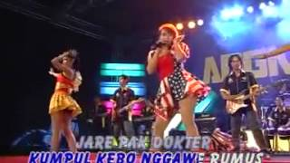 Kumpul kebo-reny farida angkasa music(deeva )