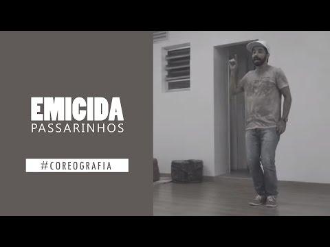{#coreografia} Passarinhos - Emicida ft. Vanessa da Mata (Coreo - Airon)