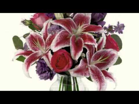 Flowers and Florists in Newburgh, Norwich Nyack NY -NEW YORK