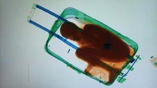 एयरपोर्ट में पकड़ी गई 5 चौंकाने वाली चीज़ें 5 craziest things Found in AIRPORT
