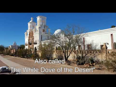 Tucson Arizona And The Desert Experience