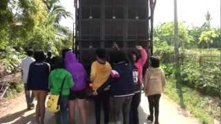 Repeat youtube video รถแห่ยองบ่าง บ้านกุดหัวช้าง อ.ภูเขียว จ.ชัยภูมิ