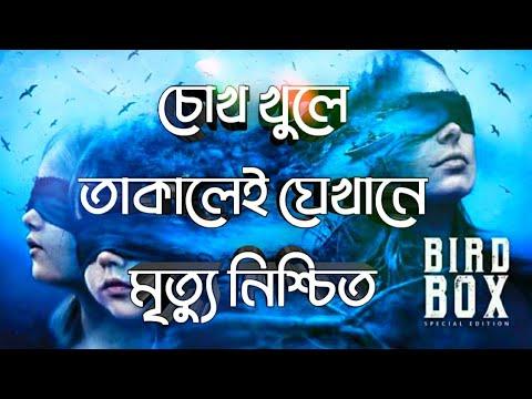Download Bird Box Movie Explained In Bangla Bird Box A Netflix Movie Ending Explained The world Of Keya