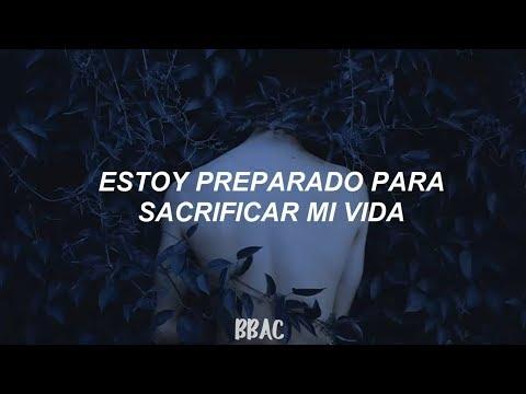 Shawn Mendes - Mercy | Traducida Al Español |🌻