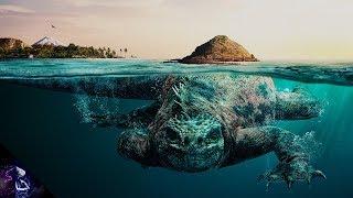 5  सबसे रहस्यमय समुद्री जीव TOP 5 MYSTERIOUS SEA CREATURES (HINDI)