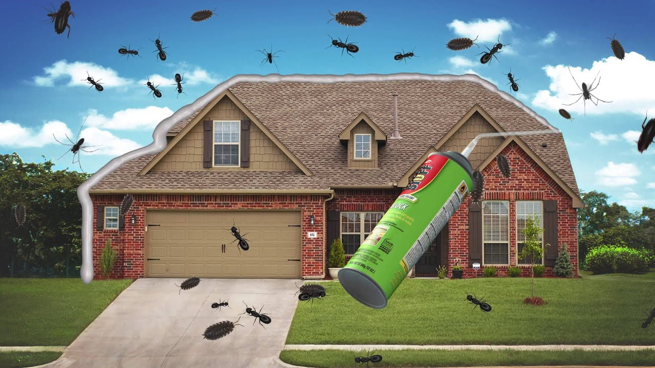 Give pests the ultimate do not enter with GREAT STUFF™ Pestblock Insulating  Foam Sealant
