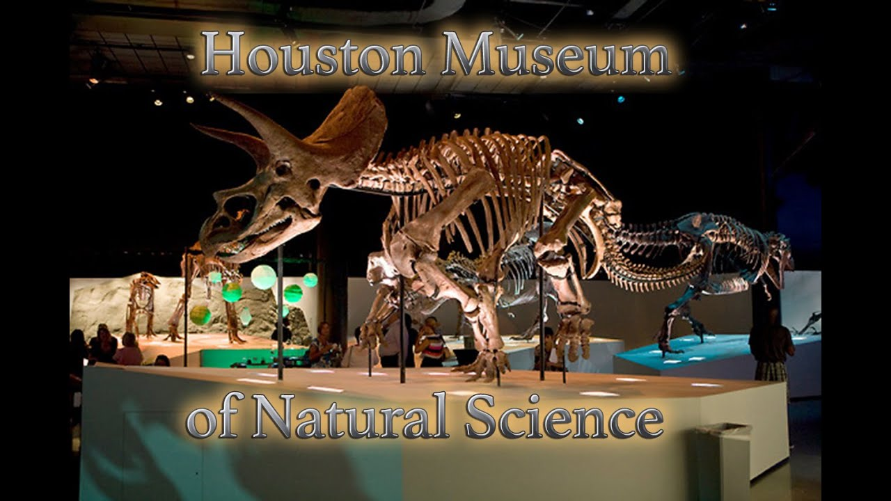 Houston Museum Of Natural Science 101