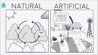 Natural vs Artificial ecosystems - WELS (Waterpedia Environmental Learning Series)