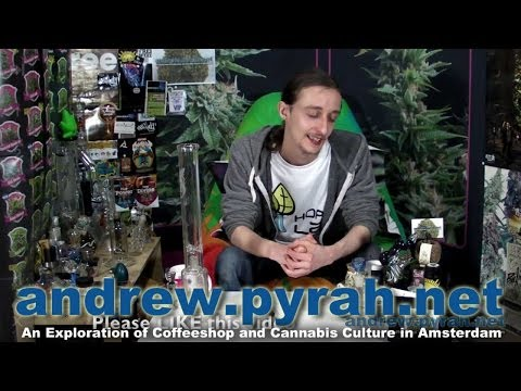 Bongs, Thoughts and Updates - Amsterdam Weed Review 2014