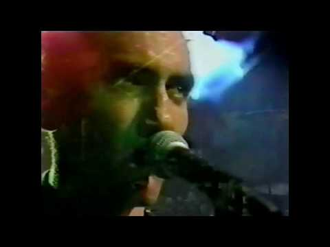 Paul Kelly and the Coloured Girls live - 1986