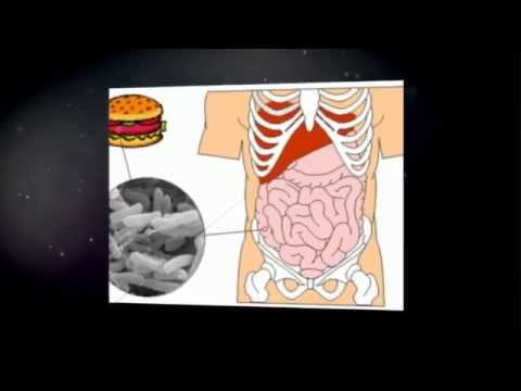 Tratamiento Para Escherichia Coli