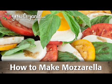 How to Make Organic Mozzarella Cheese