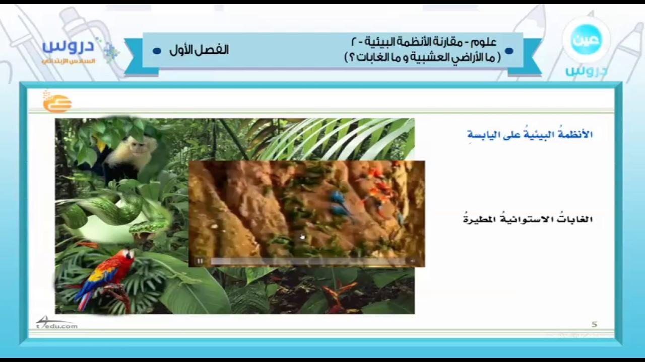 السادس الابتدائي الفصل الدراسي الأول 1438 علوم مقارنة الأنظمة البيئية 2 Youtube