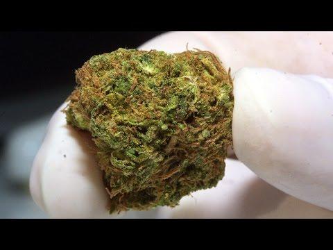 La venta de marihuana en Colorado se ayuda de la tecnología