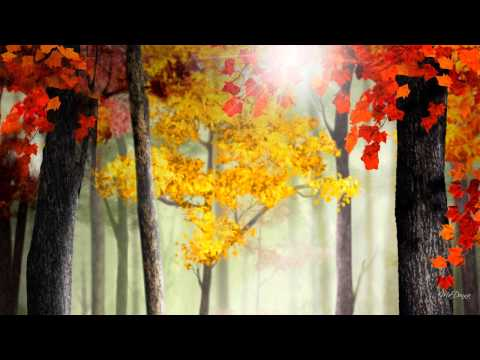Coro Tre Ponti - Bright Morning Stars