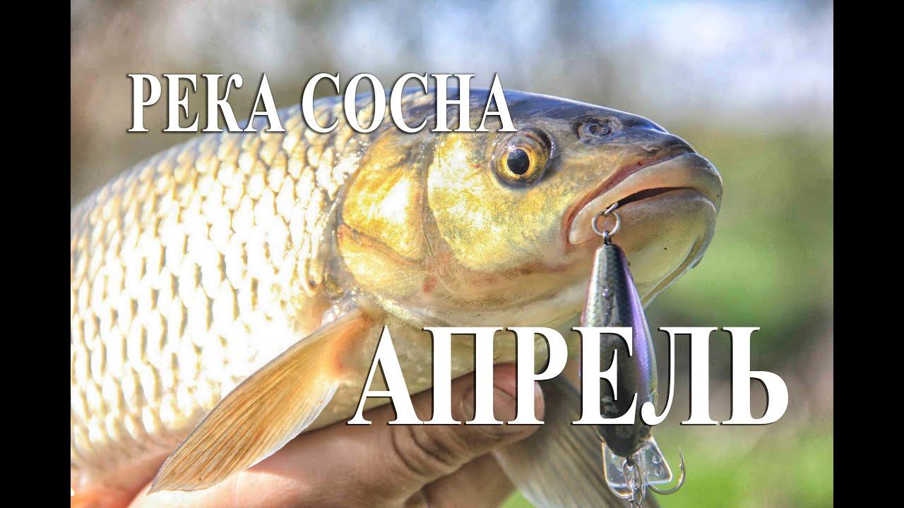 рыбалка в киржачском районе владимирской области