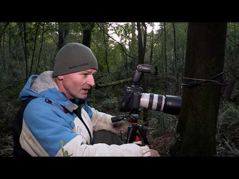 wildlife Photographer tips: & the 7d mk2