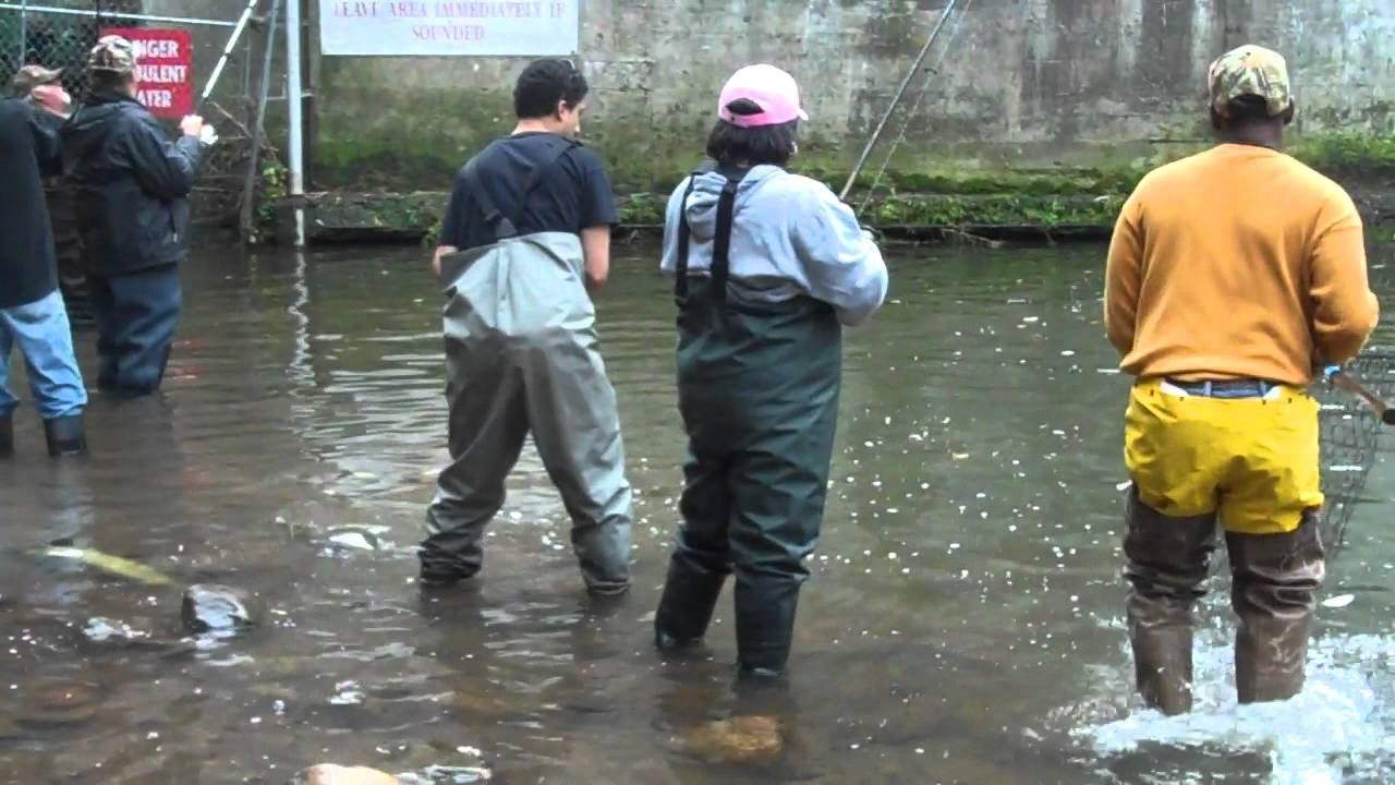 Andy salmon fishing at burts dam upstate new york youtube for Salmon river ny fishing regulations