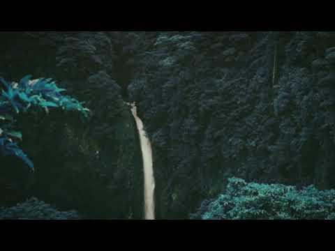Jungle (Instrumental version) - Tash Sultana