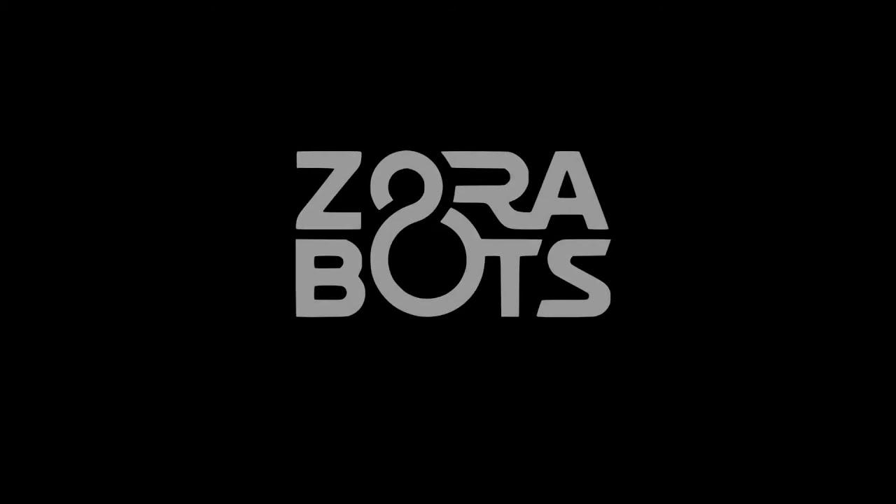 Lancement du logiciel ZBOS CONTROL 2.0