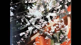 2000年8月19日リリース 1. 桜花ノ理(黒猫の台詞入り) 2. 蟒蛇万歳.