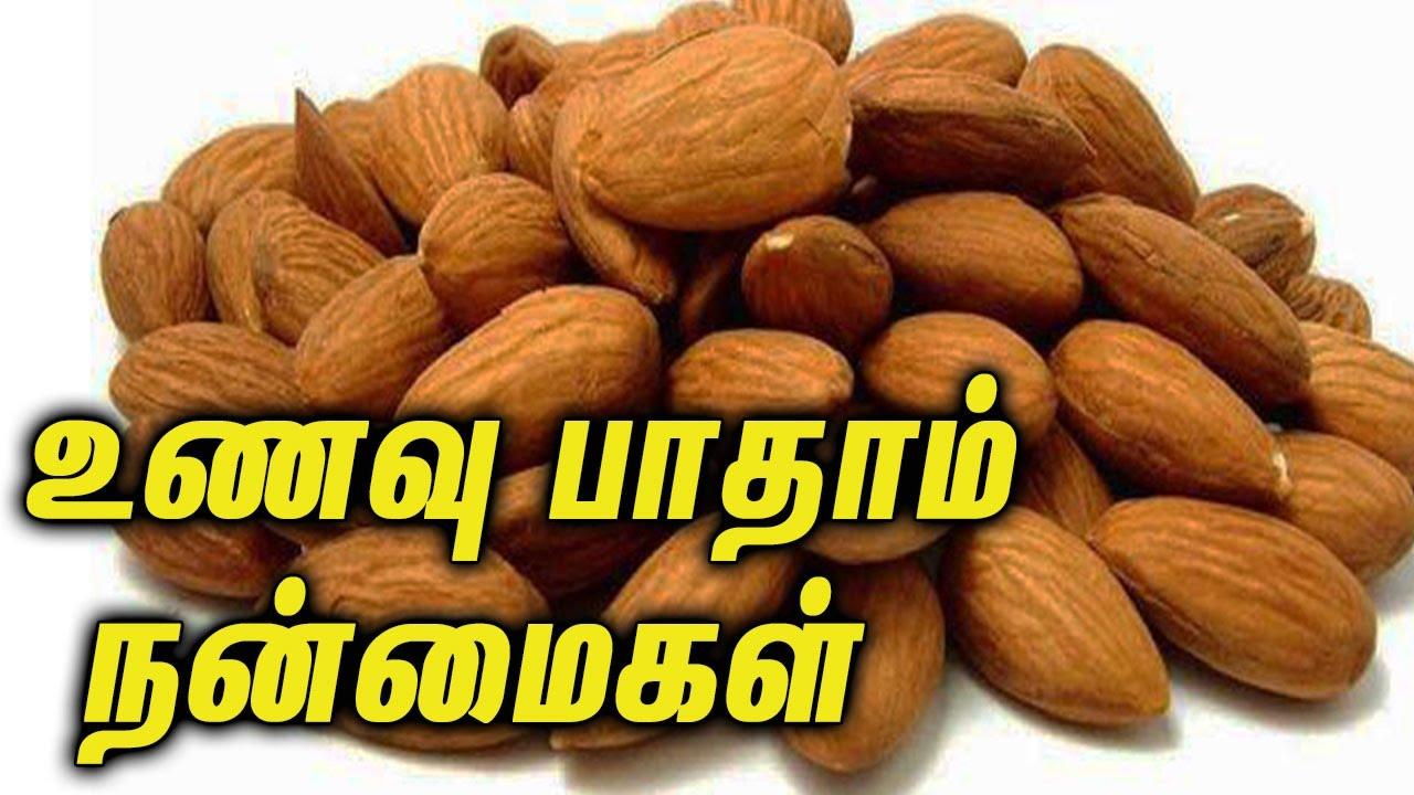 Image result for பாதம் பருப்பு