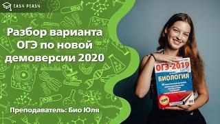 Разбор варианта ОГЭ по биологии 2020   Открытый урок   EASY PEASY
