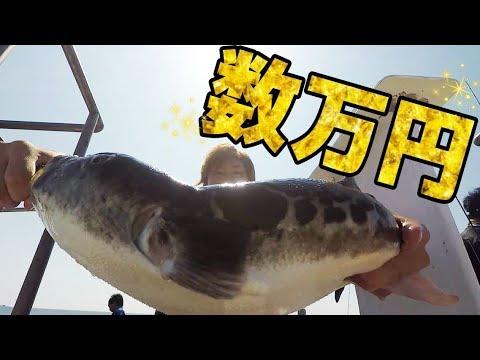 ついに念願の【あいつ】が釣れた!!!釣れた魚で料理してみた
