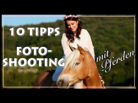 Pferde Tipps