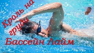 Кроль на груди| Упражнения| Бассейн ЛАЙМ| КАК НАУЧИТЬСЯ ПРАВИЛЬНО ПЛАВАТЬ| How to learn to swim