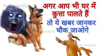 घर के अंदर कुत्ता पालना शुभ है या अशुभ सुनकर आप चौक जायेगे mysteries of dog