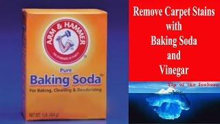 Carpet Stain Removal with Baking Soda and Vinegar - Watch That Stain Vanish Before Your Eyes