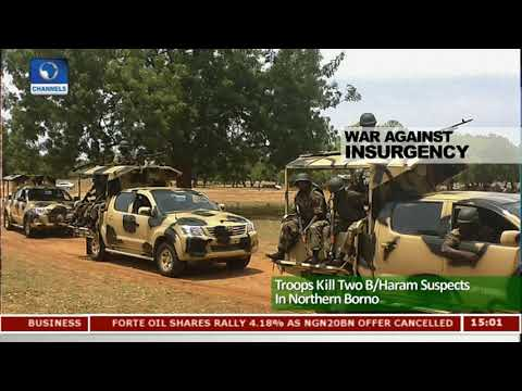 Troops Kill Two Boko Haram Suspects In Northern Borno