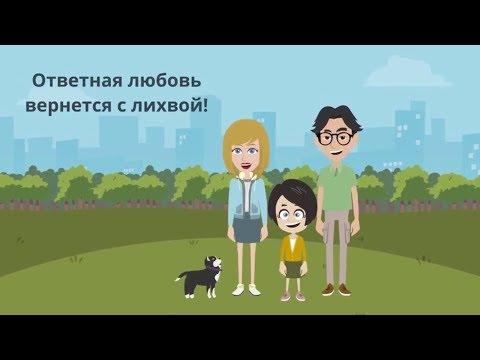 Как помочь бездомной кошке
