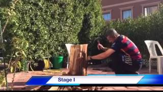 How to make a table from a tree stump