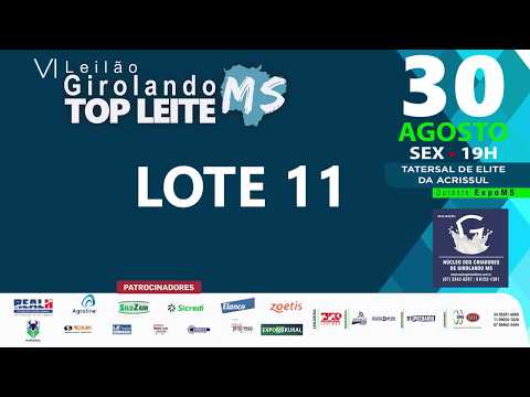 LOTE 11 - TOM CACIQUE RPM DA PARAÍSO